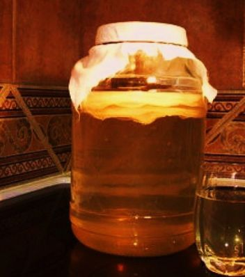 Чайный гриб - напиток для здоровья и красоты