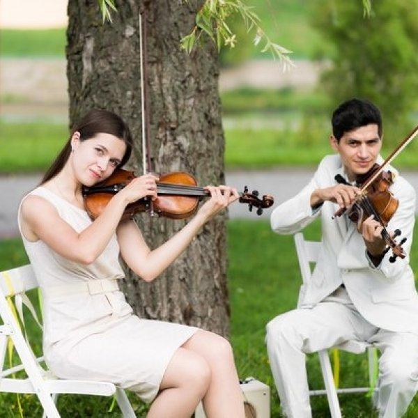 Репетитор по игре на скрипке