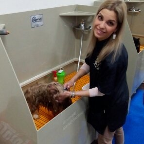 Ванна для груминга Animals