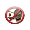 Дезинфекция. Избавление от тараканов, клопов, крыс