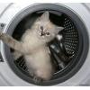 Ремонт стиральных машин на дому в Москве.