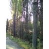 Продам Забор кованый массивный, пруток 20х20