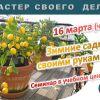 """Семинар """"Зимний сад своими руками"""""""