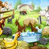 Навоз с собственной фермы